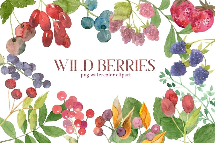 Mixed Berries Watercolor Clipart Set example image 1
