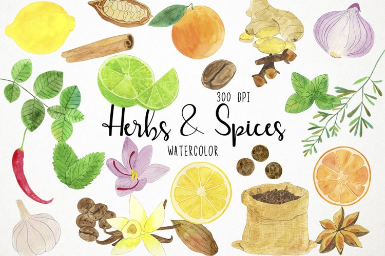 Watercolor Herbs Clipart, Spices Clipart, Herbs and Spices example image 1