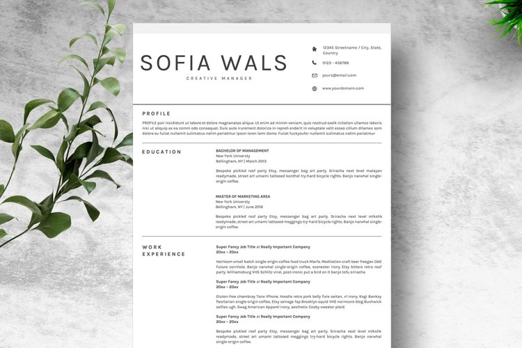 Clean Resume Template CV MS. Word & Google Docs MAC Pages example image 1