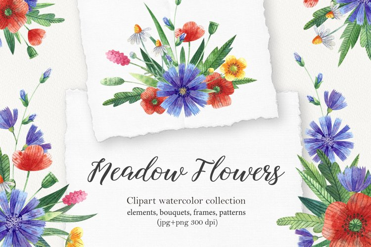 Meadow flowers example image 1