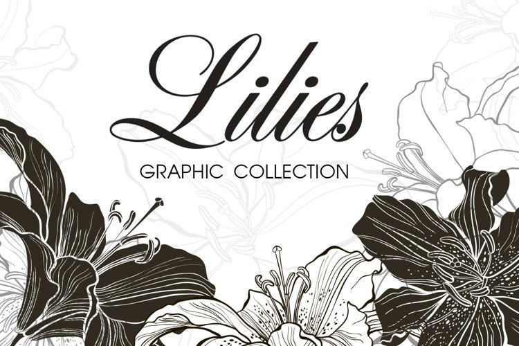 Lilies. Graphic collection. example image 1