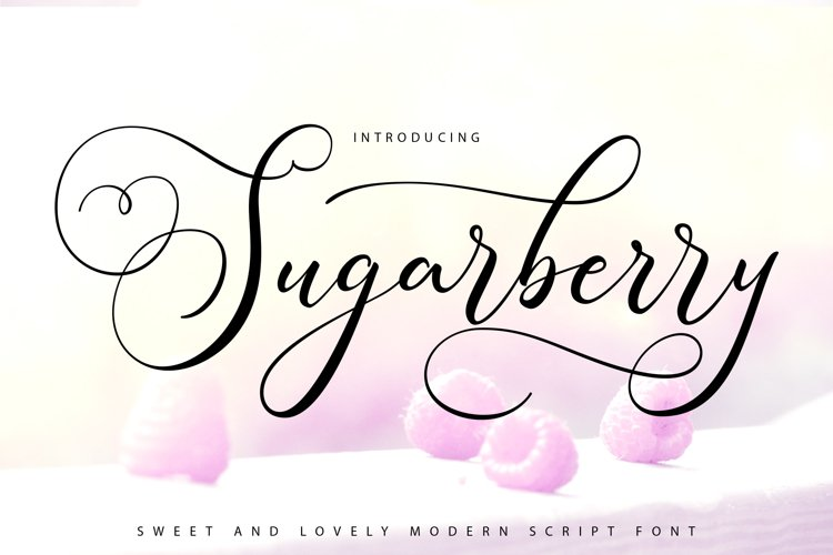 Sugarberry | Modern Script Font example image 1