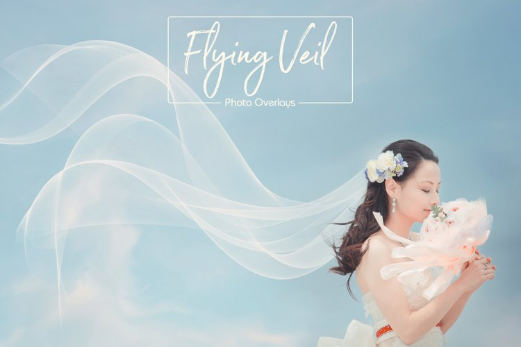 Flying Veil Overlays example image 1