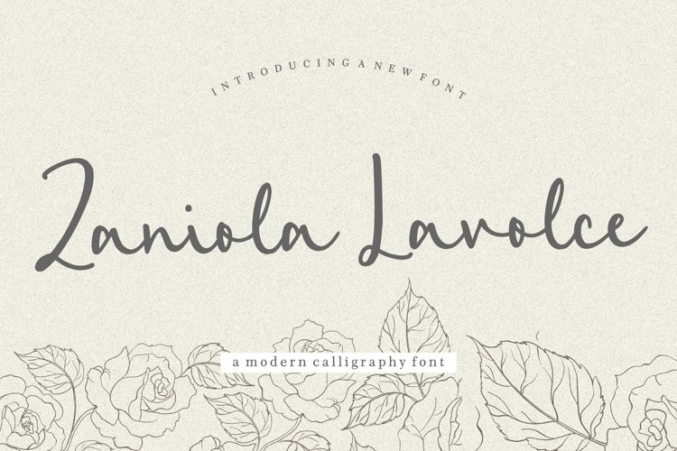 Zaniola Lavolce Modern Callihgraphy Font example image 1