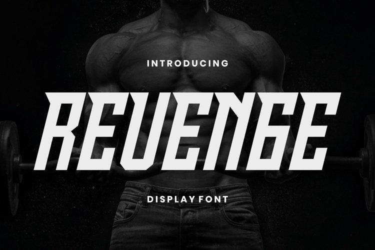 Web Font Revenge Font example image 1