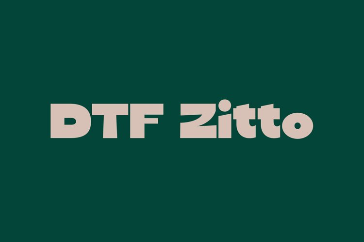 DTF Zitto example image 1