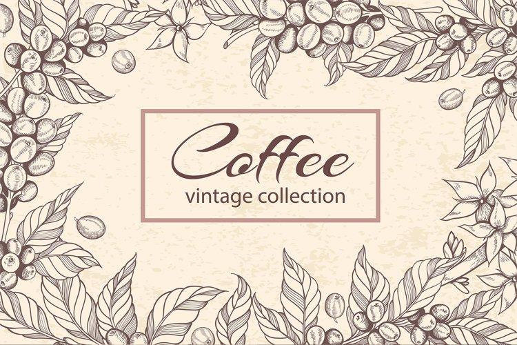 Vintage Vector Coffee Design Kit