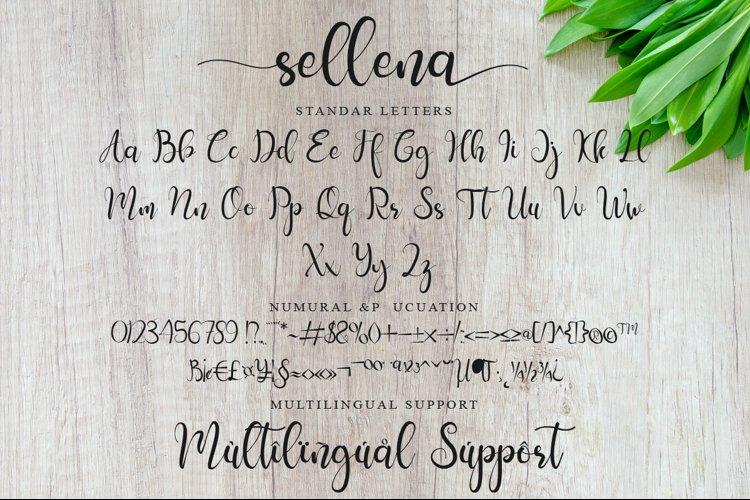 Sellena example 7