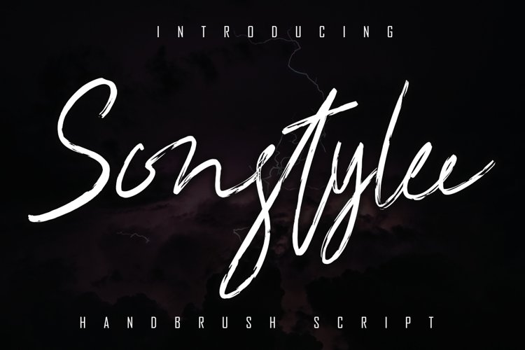 Sonstylee Handbrush Font example image 1