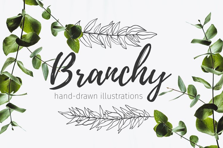 52 hand drawn branches example image 1