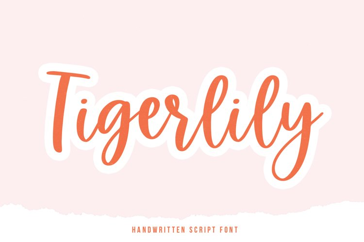 Tigerlily - A Handwritten Script Font example image 1