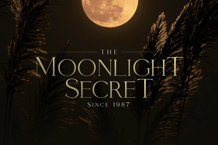Moonlight Secret - by Giveaway Serif Font example image 1