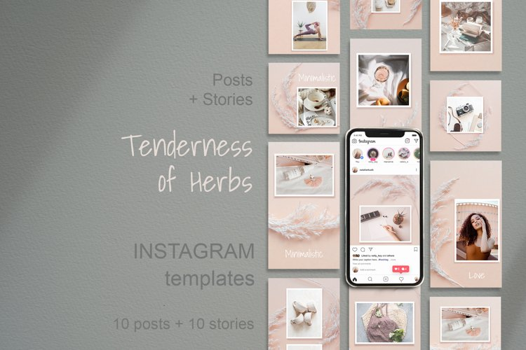 Instagram Template Posts and Stories with Herbs example image 1