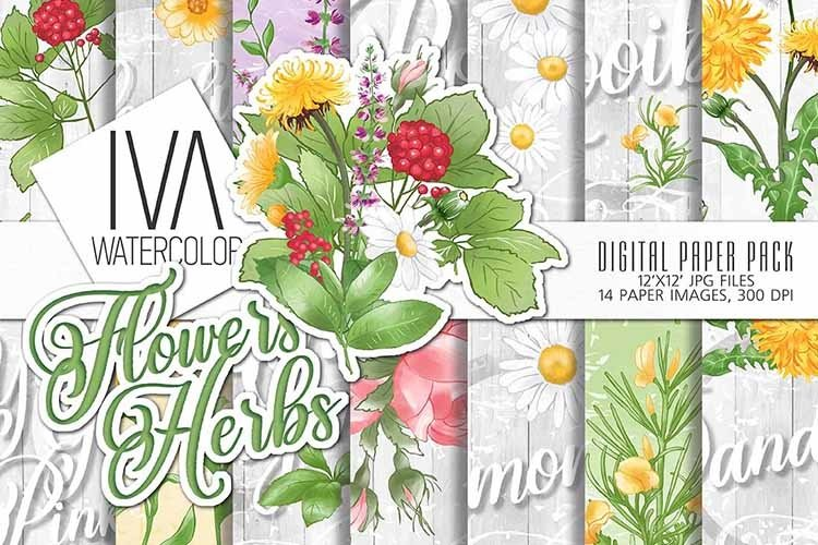 Flowers and herbs digital paper pack example image 1