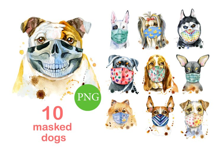 Dogs in face mask example image 1