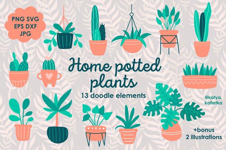 Home Potted Plants Doodle Set. Home Carden Illustration