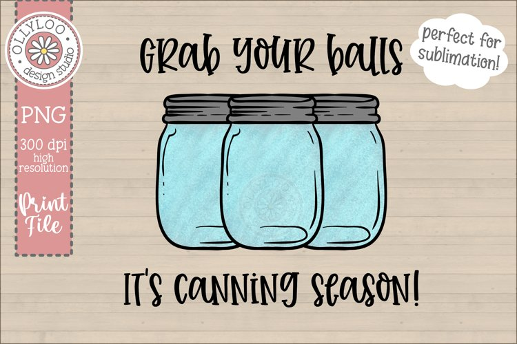 Grab Your Balls, It's Canning Season | Food Pun Sublimation example image 1