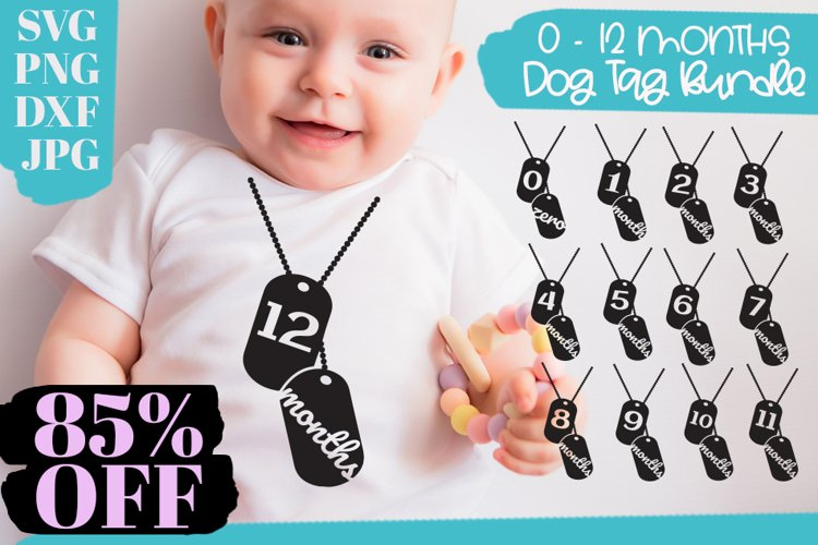 Baby Monthly Milestone Bundle, 0 to 12 Months Dog Tag Design