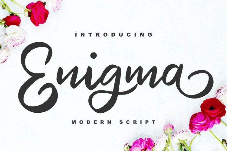Enigma   Modern Script Font example image 1