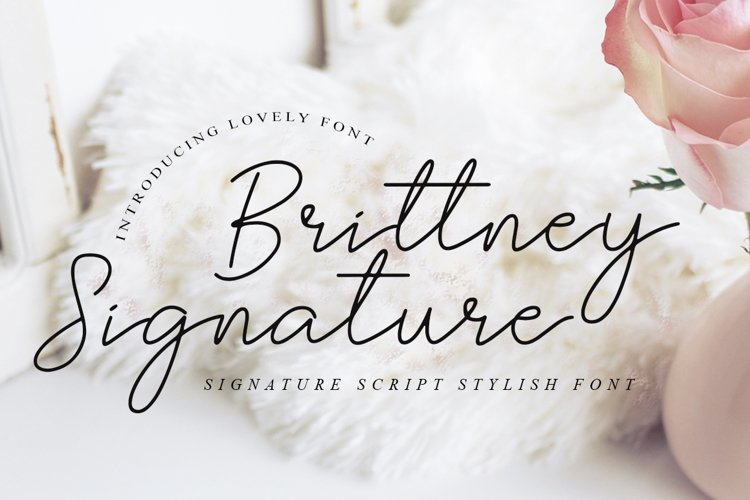 Brittney Signature - Beauty Handwritting Fonts example image 1