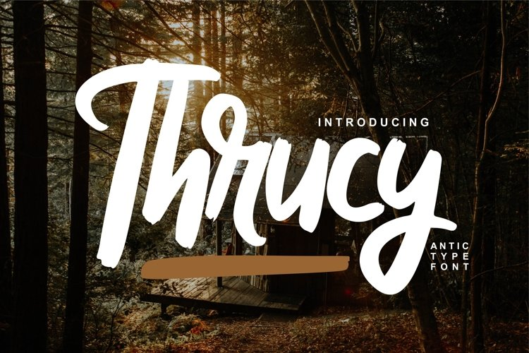Thrucy | Antictype Script Font example image 1
