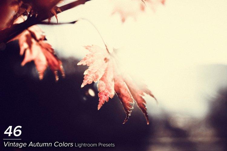 46 Vintage Autumn Colors Lightroom Presets example image 1