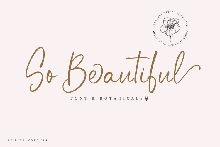 So Beautiful Font and Botanicals example image 1