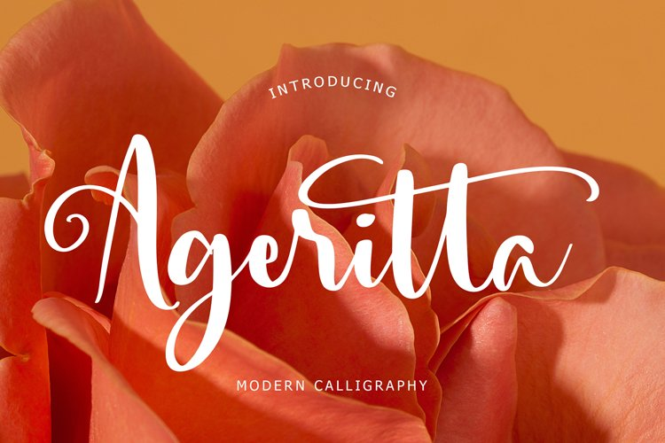 Ageritta Modern Calligraphy example image 1