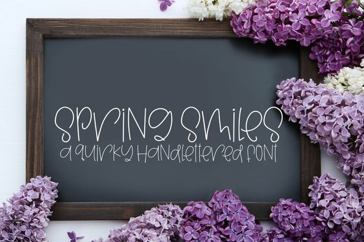 Web Font Spring Smiles - A Quirky Handlettered Font example image 1