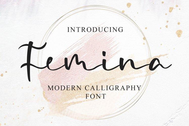 Femina - a Modern Calligraphy Font example image 1