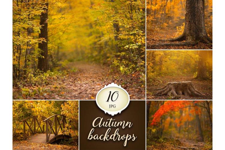 10 Autumn Digital Backdrops