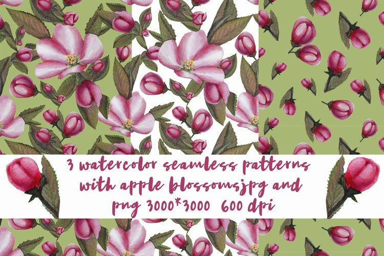 3 watercolor patterns with Apple blossoms, sublimation