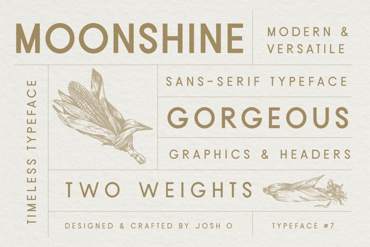 Moonshine Font   A Classic Sans Serif example image 1