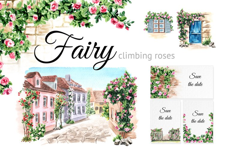 Fairy climbing roses example image 1