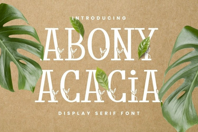 Web Font Abony Acacia Font example image 1