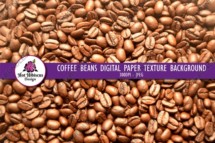 Coffee Beans Texture Background Photograph