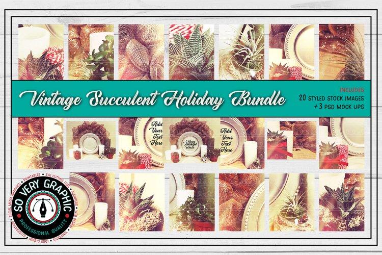 20 Holiday Succulent Vintage Photos & Mock Up Bundle