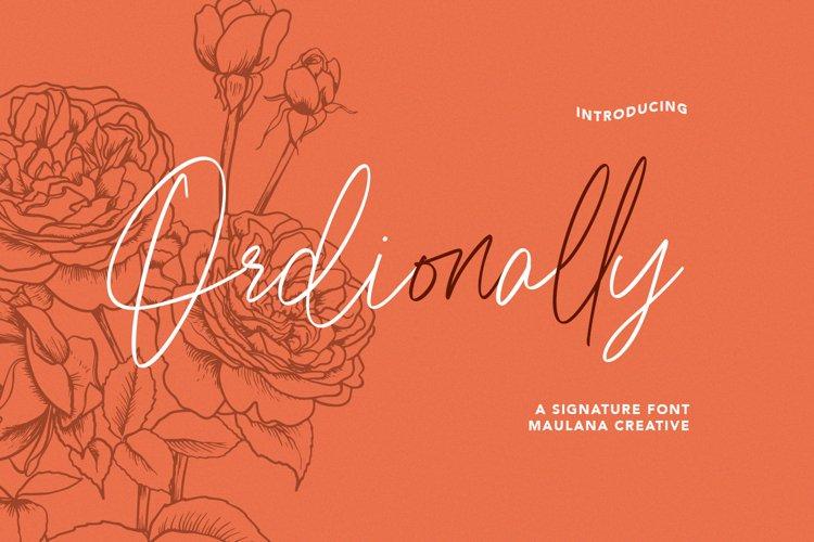 Ordionally Signature Font example image 1
