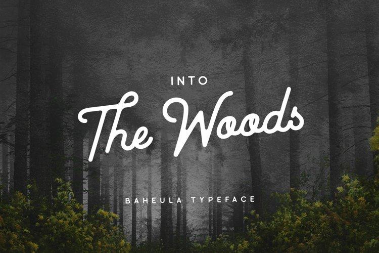 Baheula Script Typeface example image 1