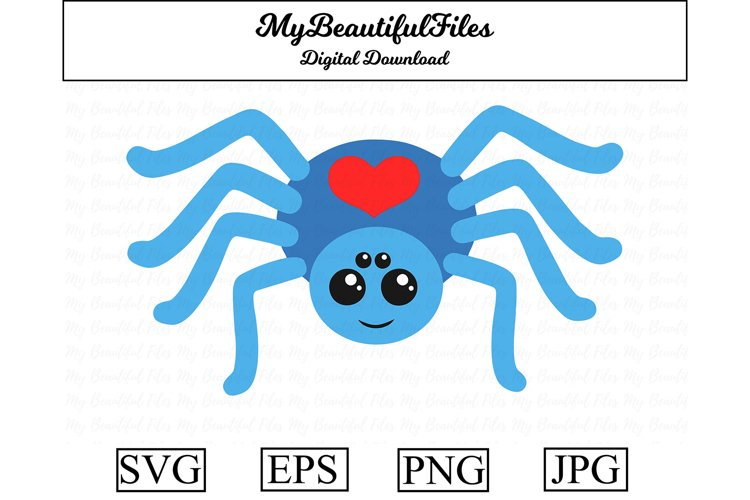 Spider SVG - Cartoon Animal SVG, EPS, PNG and JPG example image 1