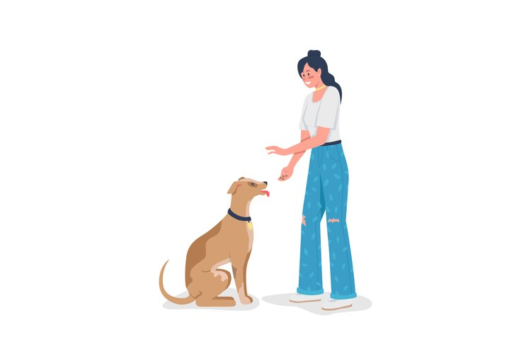 Woman teaching dog to sit color vector detailed character