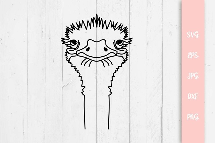 Cute Ostrich Svg File example image 1