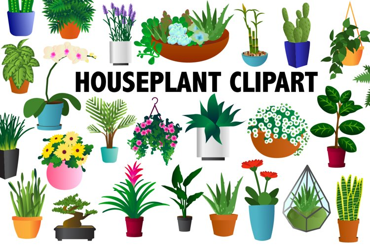 Houseplant Clipart example image 1