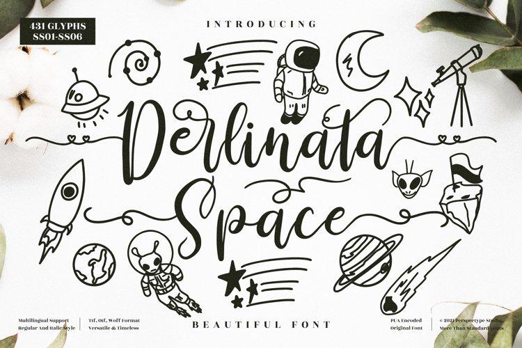 Derlinata Space - Beautiful Script Font example image 1