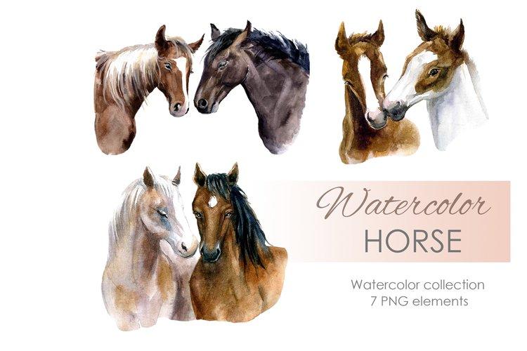 Watercolor Horse Clipart. Cute illustration. Farm animals