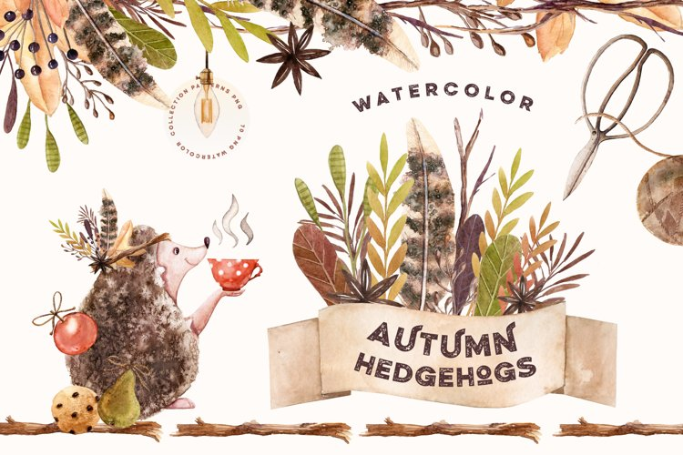 Watercolor Autumn Hedgehogs example image 1