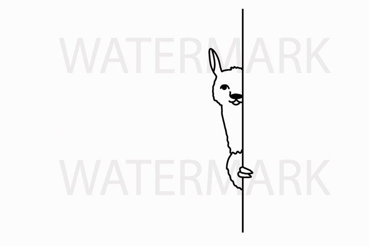 Alpaca Hiding peeping at you - SVG/JPG/PNG Hand Drawing example image 1