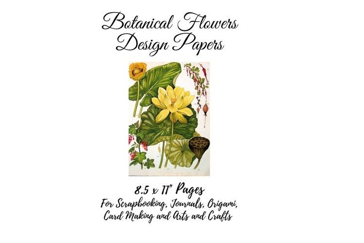 Vintage Botanical Full Page Floral Sheets 8.5 x 11, PDF example image 1