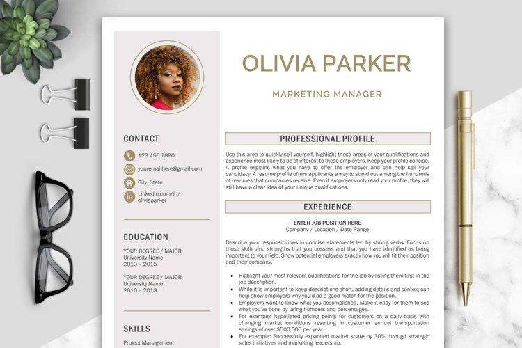 Resume Template / CV Templates