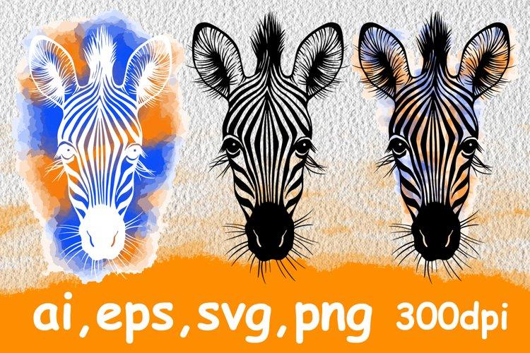 Hand drawn vector portrait of zebra